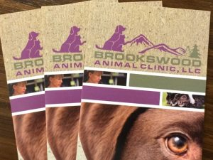Brookswood Animal Clinic