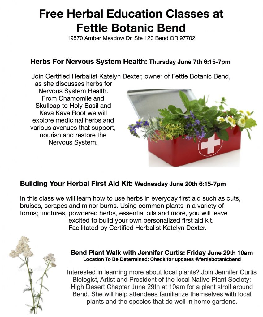 Building Your Herbal First Aid Kit – Free Herbal Education